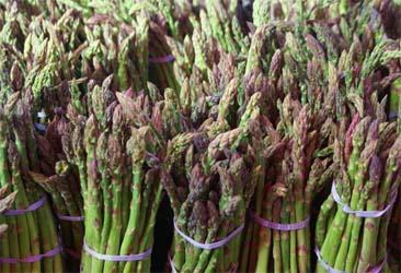 asparagus-selection