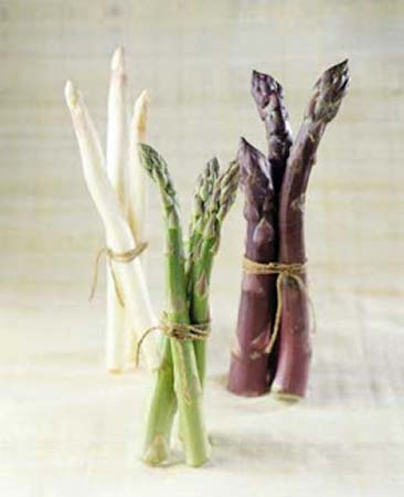 the-best-asparagus-variety-growing
